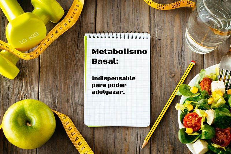 metabolismo-basal