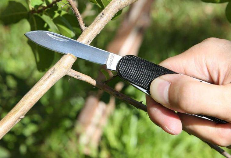 Zanmax 3101 cuchilla