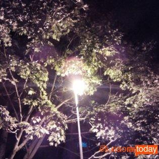 Cubot Magic foto de noche