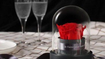 Xiaomi Mijia Eternal Rose Music Box destacada