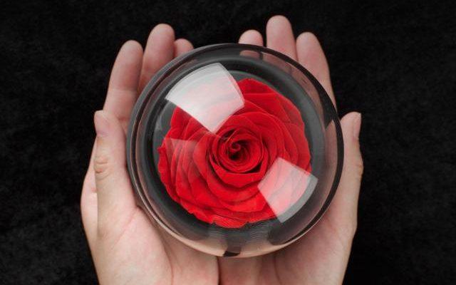 Xiaomi Mijia Eternal Rose Music Box diseño