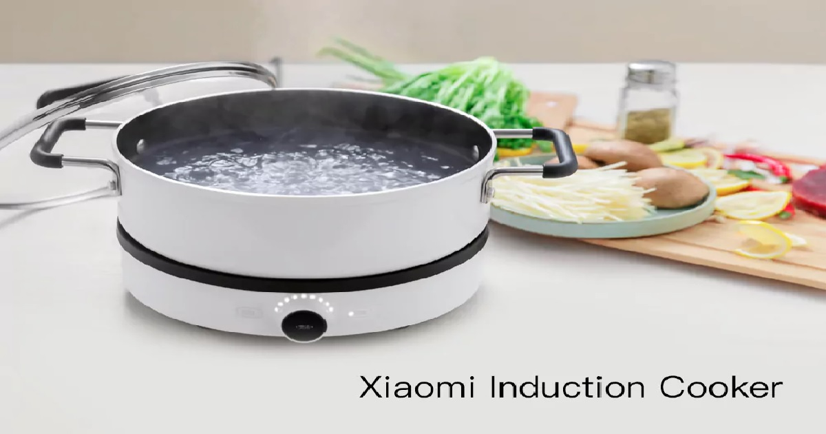 Xiaomi Mijia DCL01CM Induction Cooker