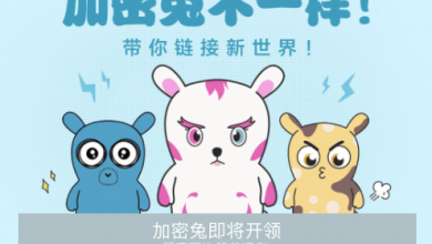 Xiaomi CryptoBunnies
