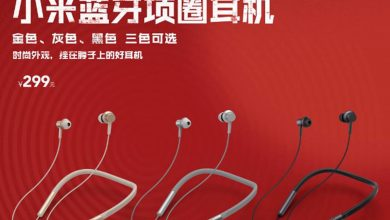 Mi Bluetooth Neckband