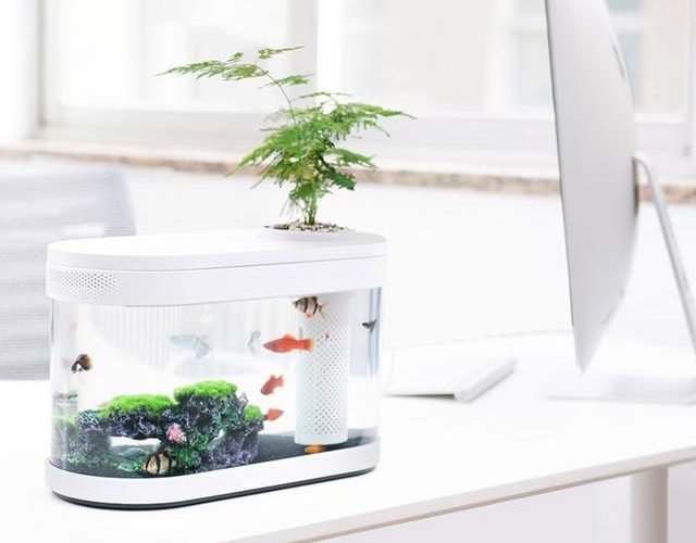 Xiaomi Geometry Fish Tank