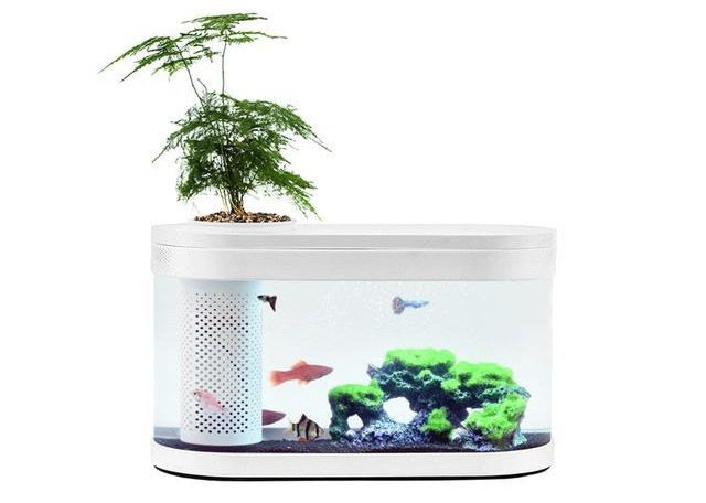 Xiaomi Geometry Fish Tank - Especificaciones