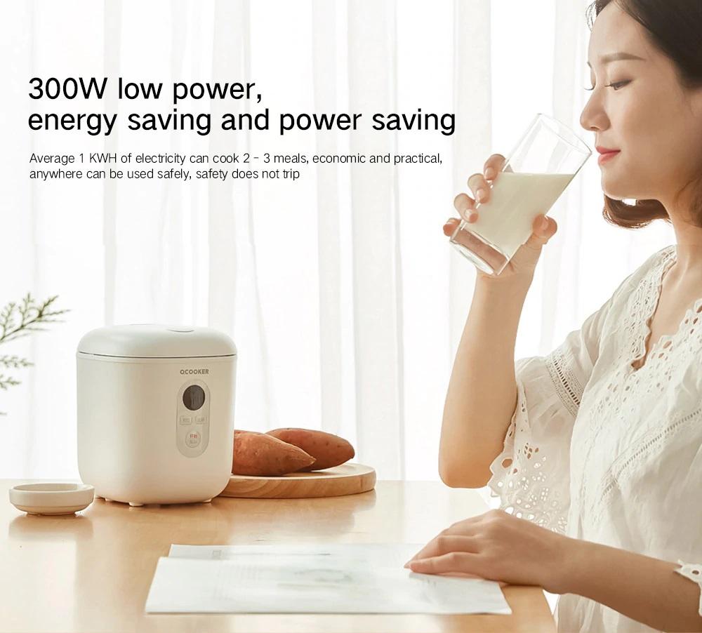 QCOOKER QF1201 energía