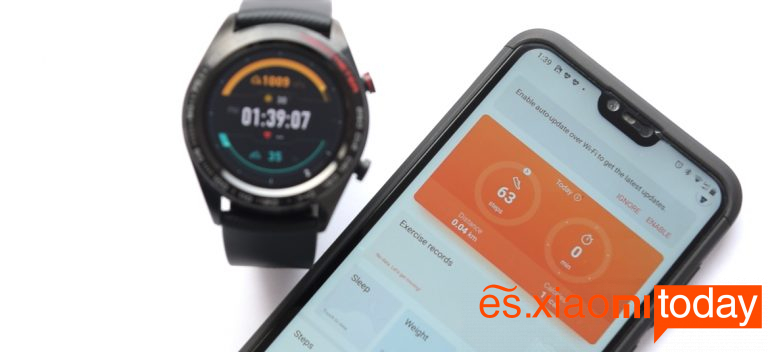 Huawei Honor Watch Magic análisis: Huawei Health
