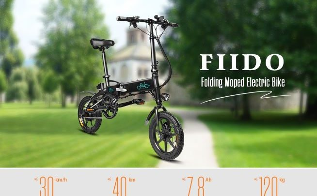 FIIDO D1 Folding Electric Bike