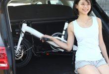 FIIDO D3 Folding Bike