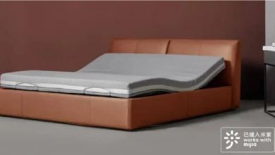Xiaomi Youpin Multifunctional Smart Electric Bed - Destacada