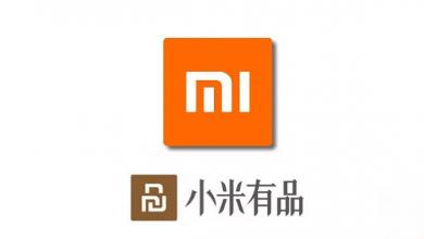 Xiaomi - ZMI 45W Car Charger y el Hi + postural belt